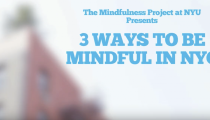 3 Ways To Be Mindful in New York City: Tips from The Mindfulness Project